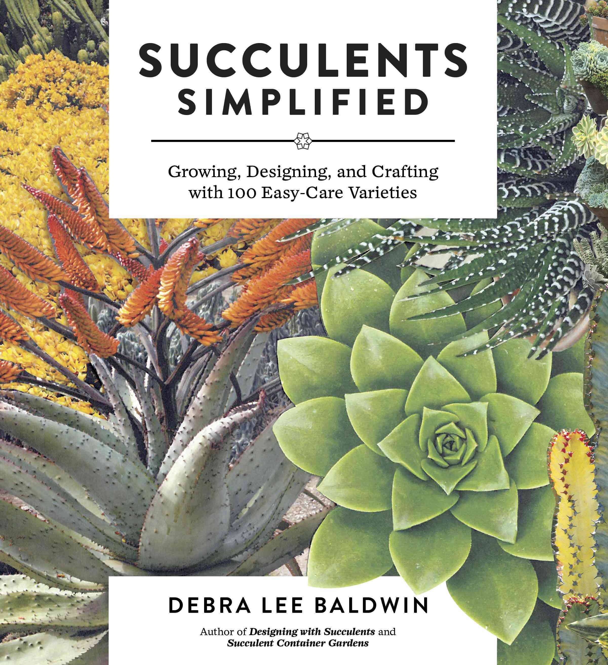 Succulents Simplified By Baldwin, Debra Lee
